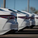 row of white sedans