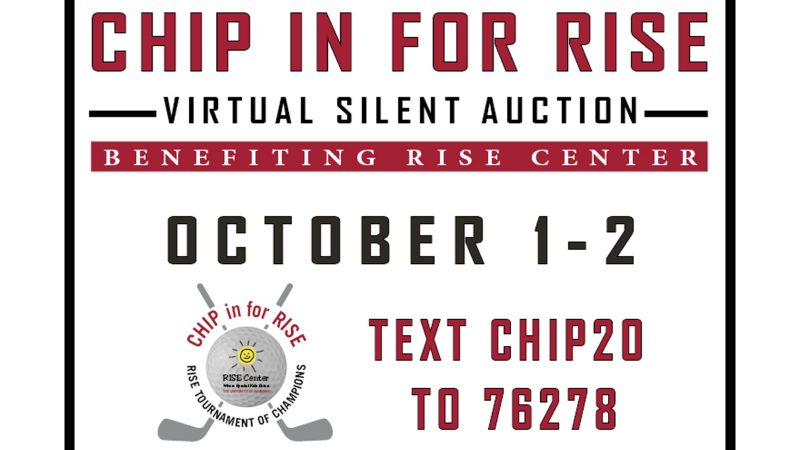 CHIP in for RISE logo