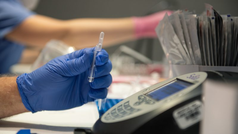 A hand in a blue rubber glove holds a coronavirus test.