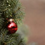 a single red glass ornament hangs on a green Christmas tree