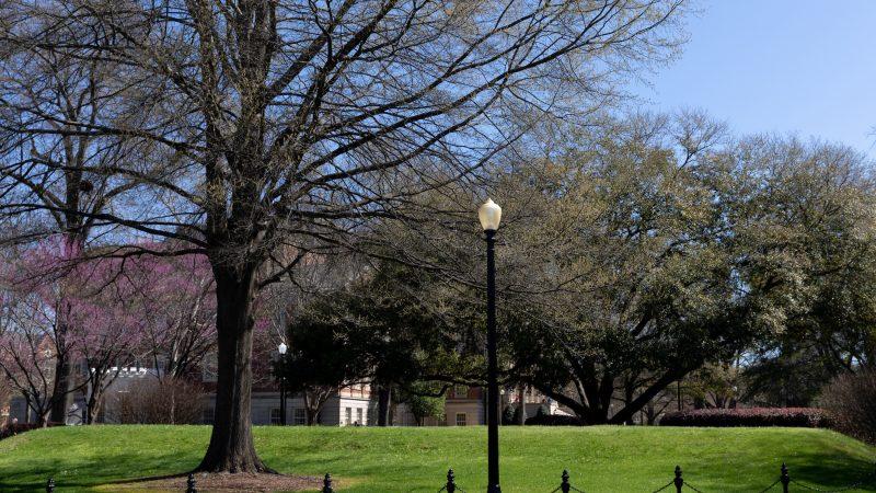 The Mound on the University of Alabama Quad
