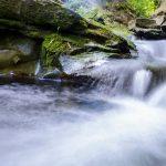 A stream cascades down rocks.