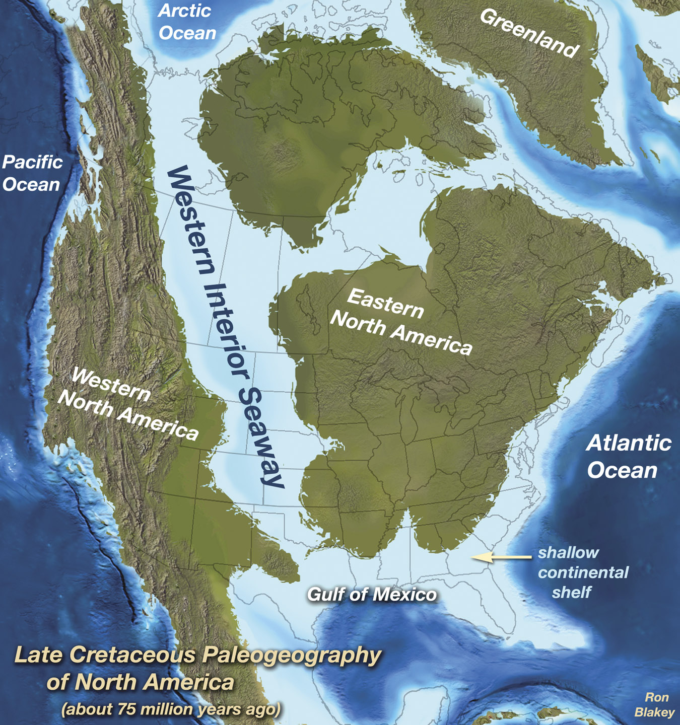 North America during the Cretaceous Period.