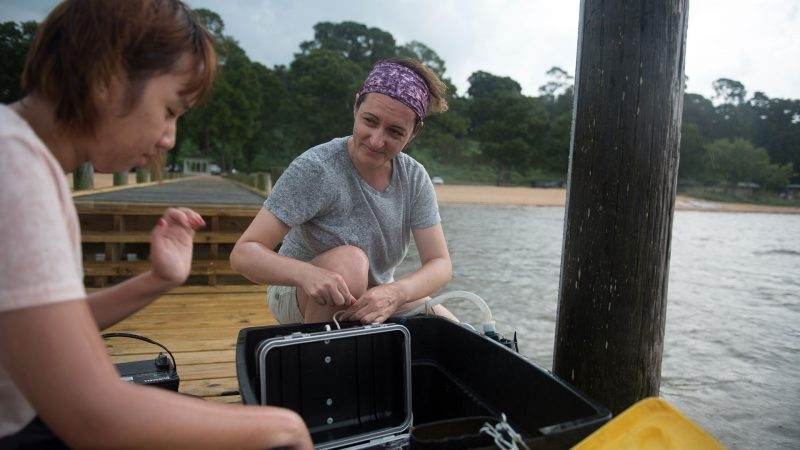 Two researchers sit on a ocean dock working with instrumentation.