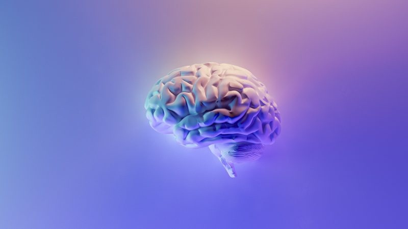 An illustration of a brain artistically placed in open space.